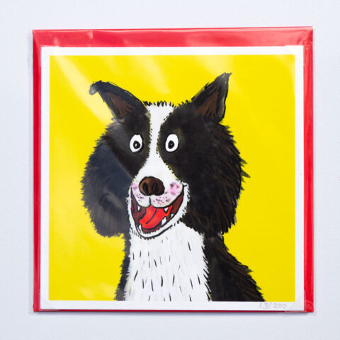 border-collie-card-by-matt-buckingham