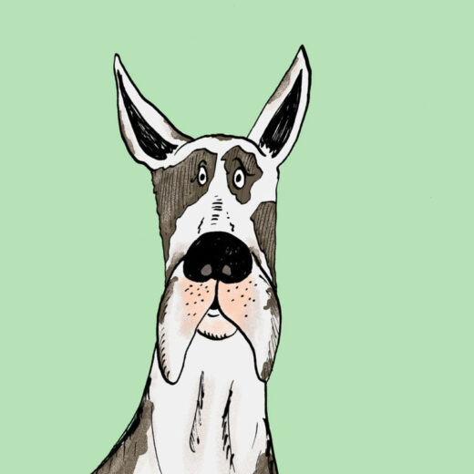 Great Dane Illustration Artist Print