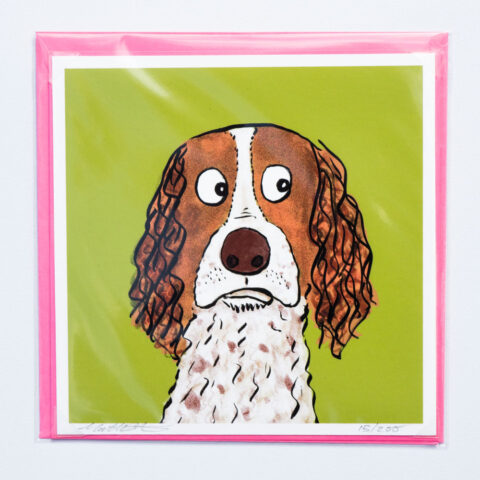 spaniel-card-by-matt-buckingham