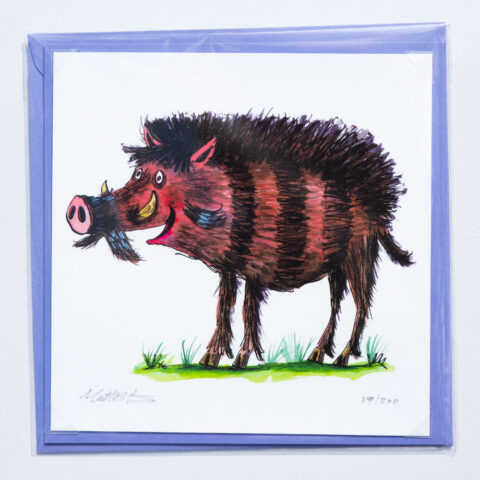 Warty pig card by matt buckingham